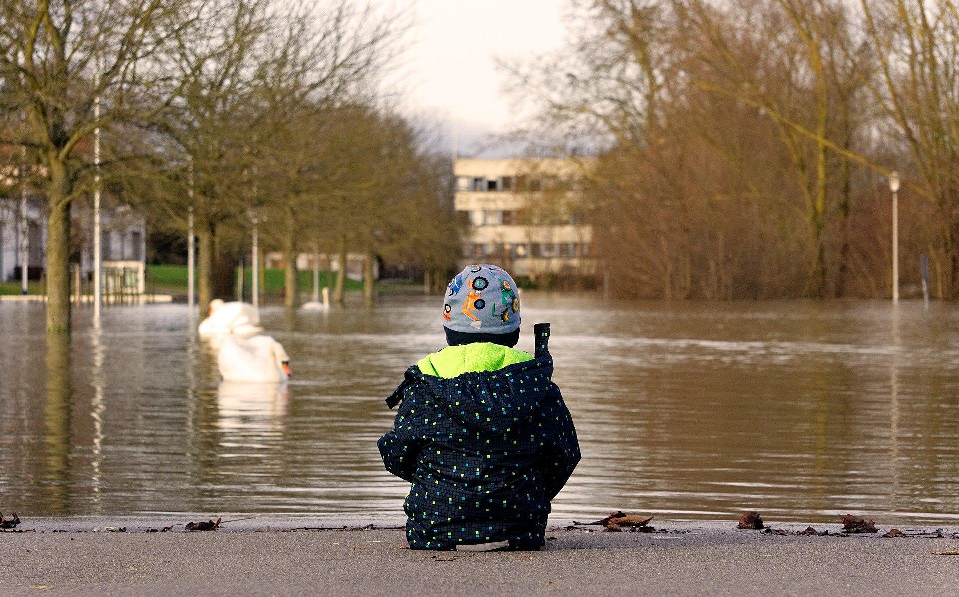 Cover: Katastrophenvorsorge und Hochwasser